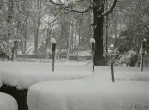 Enlace a Empezando a nevar