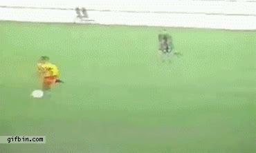 Enlace a El mejor gol del mundo {mentira}