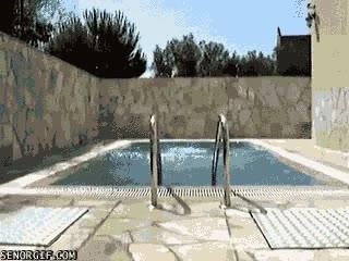 Enlace a ¡La natación adelgaza!