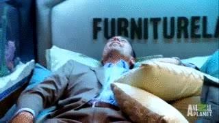 Enlace a Tú también quieres esta cama-acuario