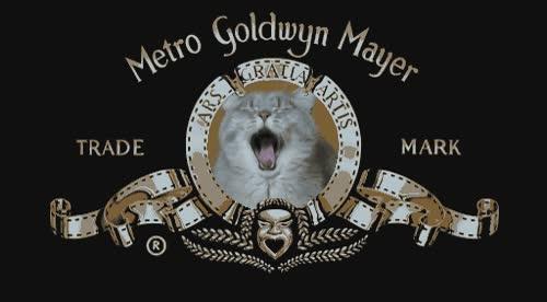 Enlace a Nueva intro de la Metro Goldwyn Mayer