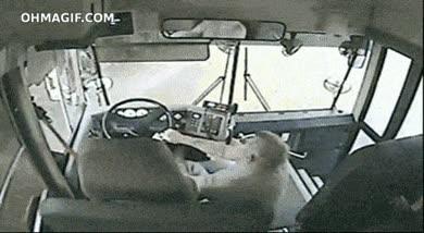 Enlace a Perdiendo el control del volante