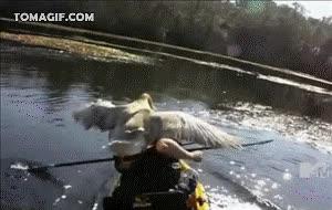 Enlace a ¡Te he dicho que no me grabes!
