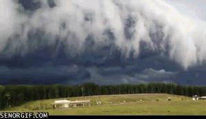 Enlace a ¡El ataque de las nubes! Yo me largoooo