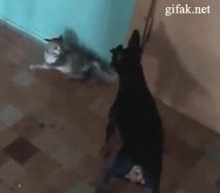 Enlace a Alejate de mí que sé kung-fu
