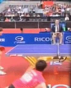 Enlace a El punto más increíble que hayas visto en ping-pong