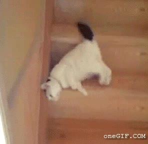 Enlace a Otro que baja las escaleras de la misma forma