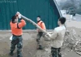 Enlace a ¡BUM! en todo el tronco