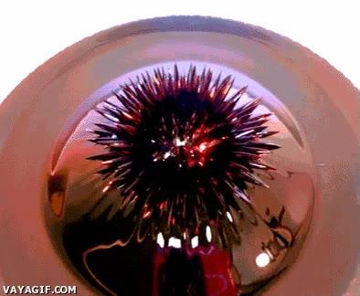 Enlace a Escultura de líquido magnético
