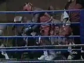 Enlace a A la mierda el boxeo, yo quiero ser una croqueta