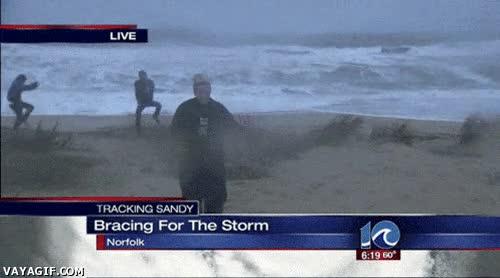 Enlace a Durante el huracán Sandy