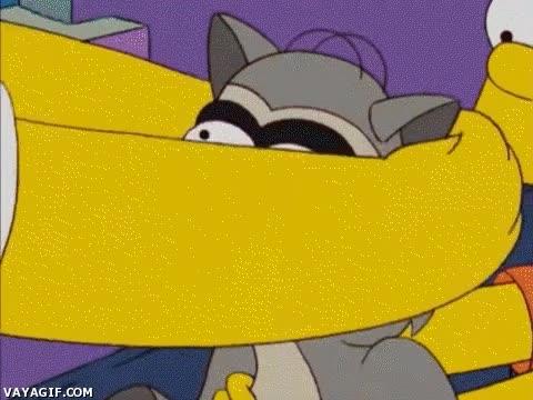 Enlace a Ahora nadie sabrá que es un mapache