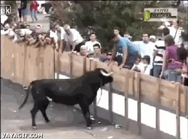 Enlace a ¡Ehe toro! ¡Ehe! ¡Ehe! ¡PAM!