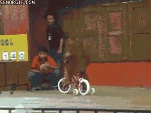Enlace a ¡Yuhu, soy un auténtico biker!