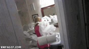 Enlace a Pistola de papel de WC