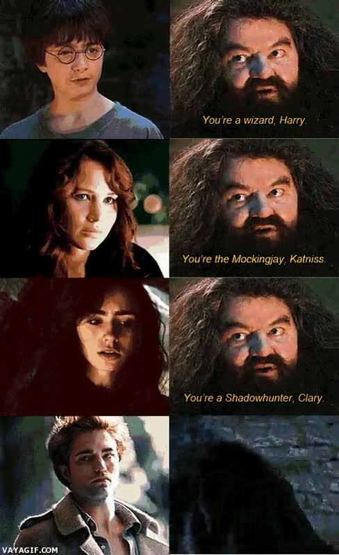 Enlace a Hagrid sabe lo que se hace