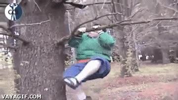 Enlace a Si es que los árboles de hoy en día ya no aguantan nada