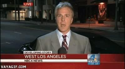 Enlace a Creo que en West Los Angeles tienen un problema de cucarachas