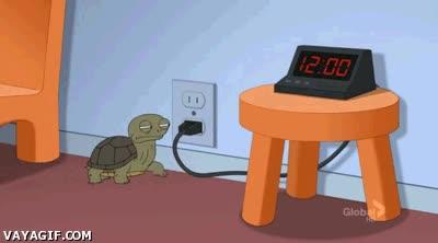Enlace a Las malvadas tortugas son las culpables de que tu despertador no suene