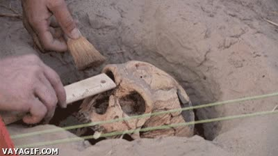 Enlace a Asi fue cómo perdí mi trabajo de arqueólogo