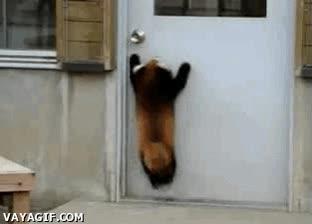 Enlace a ¡Abridme la puerta, cabrones!
