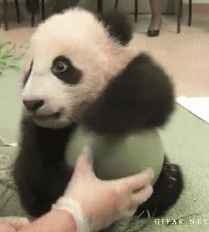 Enlace a ¡Es mi pelota! Como me la quites...