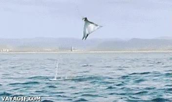 Enlace a ¡Puedo volar! Bueno, casi...