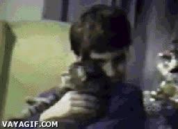 Enlace a Se te acabó el tiempo de gato tierno, ¡ahora gato asesino!