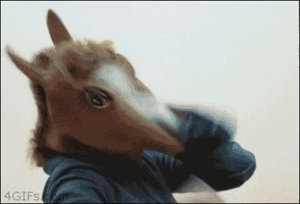Enlace a Y el caballo enmascarado es en realidad...