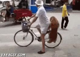 Enlace a ¿Por qué caminar si me puedo ir en bici?