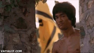 Enlace a Bruce Lee aprueba VayaGif