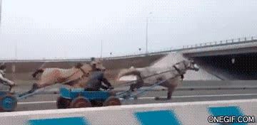 Enlace a A todo gas, versión rusa con caballos
