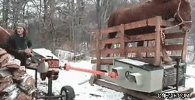 Enlace a ¿Electricidad? Bitch please, tengo un caballo...
