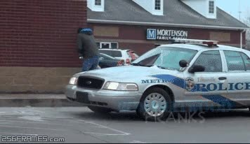 Enlace a Así es como se trollea a un policía