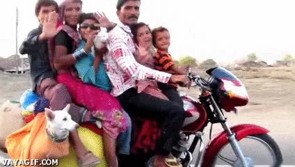 Enlace a ¿Que las motos son para dos ocupantes como máximo? En la India no...