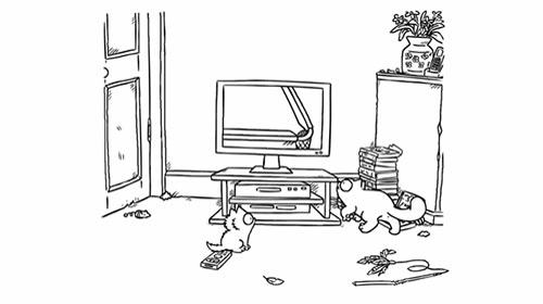Enlace a Y por esto no es buena idea dejar a los gatos con la tele puesta