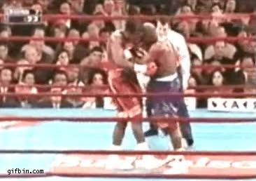 Enlace a Los reflejos de un árbitro de boxeo