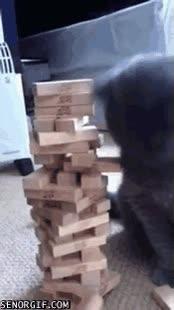 Enlace a Gato que juega al Jenga mejor que yo