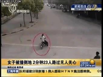Enlace a En China los perros te atropellan a ti
