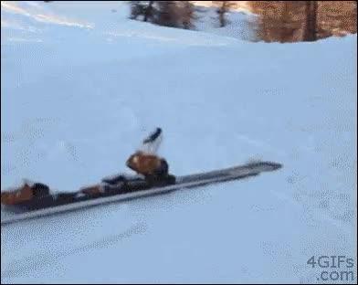Enlace a Ni mi propio esquí quiere estar conmigo...