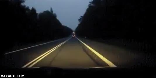 Enlace a Lo típico, vas conduciendo tranquilamente de noche por una carretera cuando...