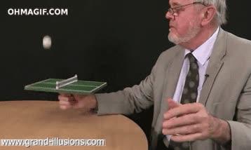 Enlace a ¿Eres muy fan del ping pong pero no tienes amigos? ¡Tenemos justo lo que necesitas!
