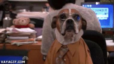 Enlace a Mi jefe es un hijo de perra, literalmente hablando