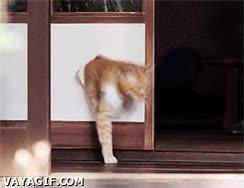 Enlace a ¿Para qué pasar por la puerta si puedo pasar por aquí?