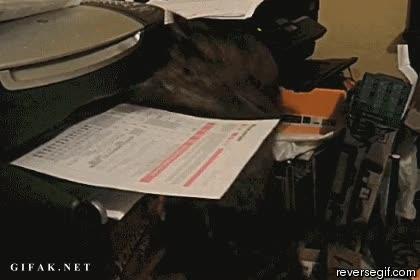 Enlace a ¡Tengo que enviar este fax, es muy urgente!