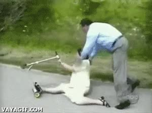 Enlace a ¡Venga Paqui, dale al patinete, verás que divertido!