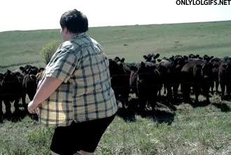 Enlace a Practicaré mis movimientos de baile con estas vacas, ¿qué opináis, amigas?