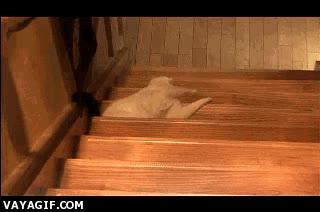 Enlace a Paso de hacer demasiado esfuerzo para bajar las escaleras, así ya va bien