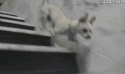 Enlace a Yo bajo las escaleras, pero a mi manera