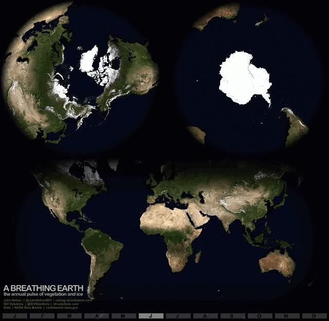 Enlace a Nuestro planeta también respira a su manera